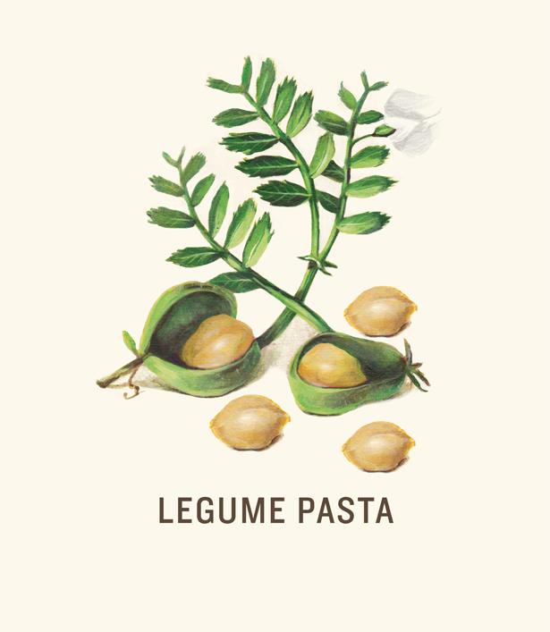 Legume Pasta